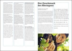 typografie-gestaltungsraster-layout-indesign-training