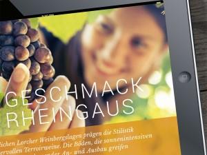 Beispiel-App beim Workshop zum Thema Digital Publishing gestalten mit InDesign und Aquafadas in Köln.