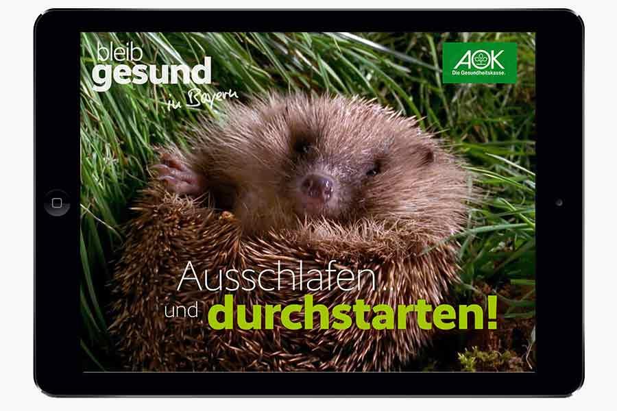 Die Startseite der AOK-App Bleib gesund überzeugt mit einer süßen Video Sequenz.