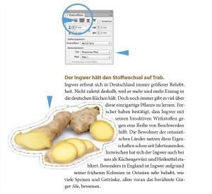 Textumfluss um eine Objektform mit Adobe InDesign