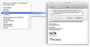 Apps versenden mit Aquafadas: Link bearbeiten und versenden